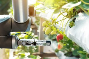農業系研究開発